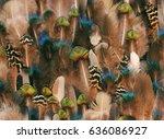 Colorful Bird Feather Bohemian Flat - Fine Art prints