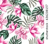 Stock photo seamless tropical flower plant pattern background hawaiian californian florida summer style 636238157