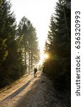 Small photo of Woman hiker standing on a mountain road, sun shining through the trees, enjoying solitude. Active lifestyle, into the wild and into the light concept.