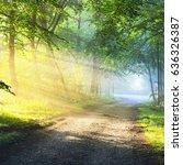 gravel road in a misty foggy... | Shutterstock . vector #636326387