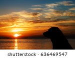 dog and sunrise | Shutterstock . vector #636469547