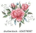 hand painted watercolor... | Shutterstock . vector #636578087