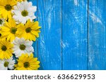 summer colorful flowers on... | Shutterstock . vector #636629953