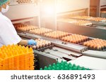 fresh and raw chicken eggs on a ... | Shutterstock . vector #636891493
