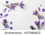 Spring Violet Flowers On A...