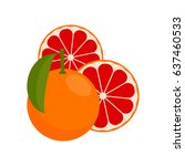 vector grapefruit. the fruit of ...   Shutterstock .eps vector #637460533