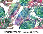 tropical palm leaves  jungle... | Shutterstock . vector #637600393