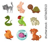 pets domestic animals vector... | Shutterstock .eps vector #637665013