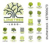 tree outdoor travel green... | Shutterstock .eps vector #637800673