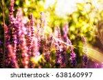 lavender floral background | Shutterstock . vector #638160997