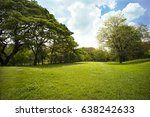 grass in the bueatiful park at... | Shutterstock . vector #638242633