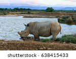 rhino in wild nature ... | Shutterstock . vector #638415433