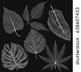 set leaves of silver on white.... | Shutterstock .eps vector #638607433