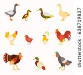 Farm Birds Vector Set In Flat...