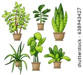 set of different house plants  | Shutterstock .eps vector #638943427