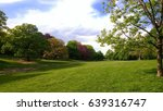 landscape with grass and trees  ... | Shutterstock . vector #639316747