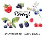 Berries Watercolor Set...