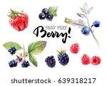 Berries Watercolor Set...