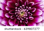 abstract flower and beautiful... | Shutterstock . vector #639807277