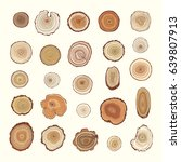 tree rings vector color graphic ... | Shutterstock .eps vector #639807913