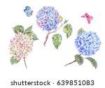 Set Of Blooming Watercolor...