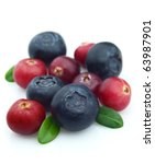 Bilberry And Cranberry On A...