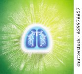 lungs illustration   halth care ... | Shutterstock . vector #639976657