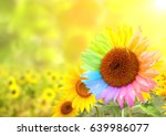 concept   to be yourself  to be ...   Shutterstock . vector #639986077