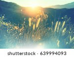 sunny day on the meadow | Shutterstock . vector #639994093