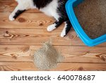 Cat Paws And Tray Toilet With ...