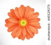 flower isolated on white... | Shutterstock .eps vector #640129273