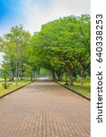 clean brick pathway alone the... | Shutterstock . vector #640338253