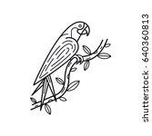 ara parrot exotic bird line art ... | Shutterstock .eps vector #640360813