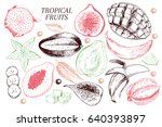 vector hand drawn exotic fruits.... | Shutterstock .eps vector #640393897