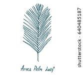 Areca Palm Leaf  Hand Drawn...