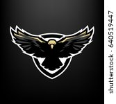 eagle in flight  logo  symbol.   Shutterstock . vector #640519447