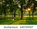 sunset in the beautiful park... | Shutterstock . vector #640769407