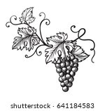set of grapes monochrome sketch.... | Shutterstock .eps vector #641184583
