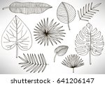 tropical leaves set  plants... | Shutterstock .eps vector #641206147