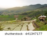 step of terraced rice field... | Shutterstock . vector #641347177