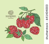 background with raspberries.... | Shutterstock .eps vector #641404003