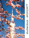Small photo of Rocketship statue behind spring cherry blossoms