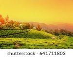 tea plantations in munnar ... | Shutterstock . vector #641711803
