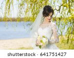 wedding. young beautiful bride... | Shutterstock . vector #641751427