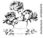 wildflower peony flower. hand...   Shutterstock .eps vector #641866243