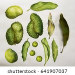 green tropical fruits and... | Shutterstock . vector #641907037