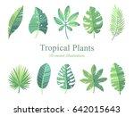 vector set illustration.... | Shutterstock .eps vector #642015643