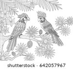 couple of parrots sitting in... | Shutterstock .eps vector #642057967