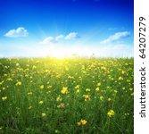 clover field blue sky and sun. | Shutterstock . vector #64207279