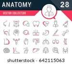set vector line icons  sign and ... | Shutterstock .eps vector #642115063